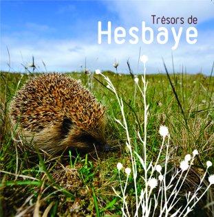 Tresors de Hesbaye