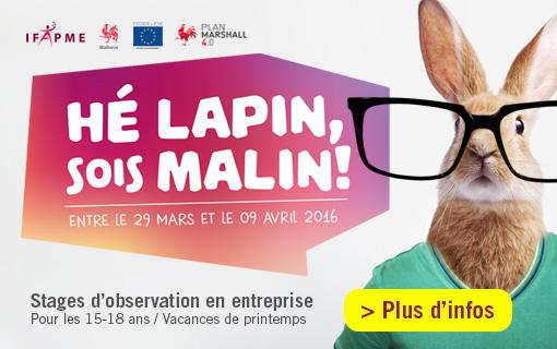 Lapins malins ifapme