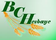 Logo BCH